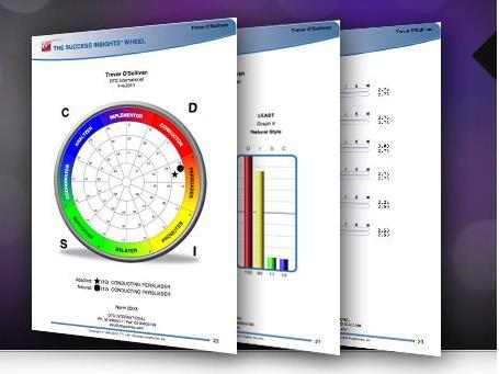 DISC Sample Assessments